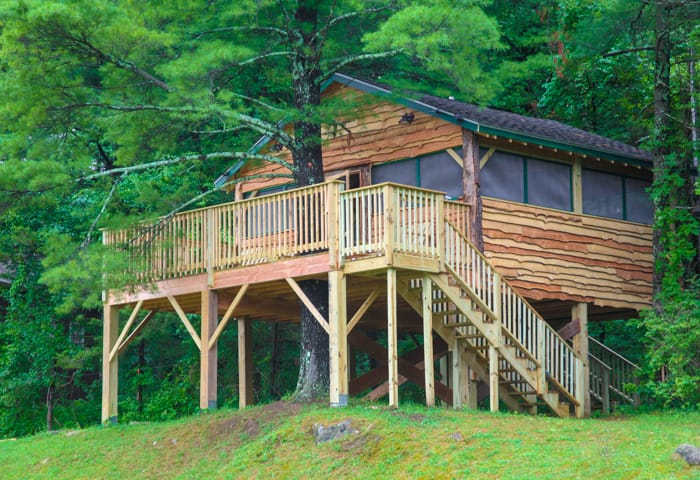 Gesher Fund treehouse
